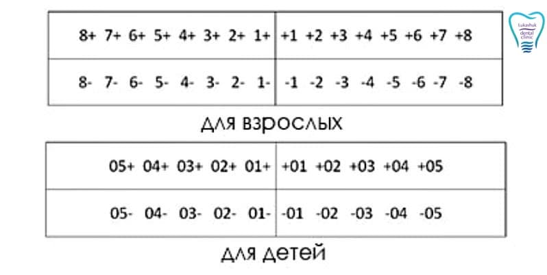 Нумерация зубов в стоматологии по системе Хадерупа | Фото - Клиника Лукашука